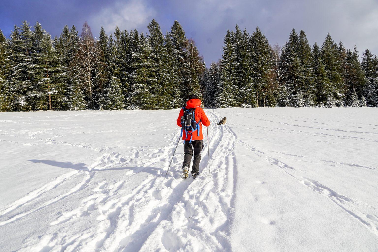 Wintertraum im Fichtelgebirge
